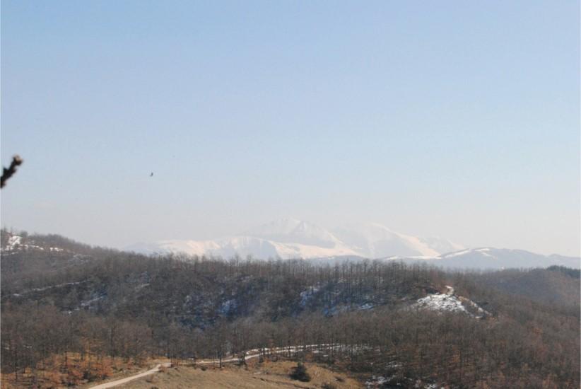 il monte Catria, in inverno, dalla cime della nostra montagna